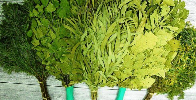 Веники для бани и сауны от производителя купить